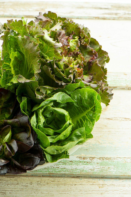 Salade verte de chez Olives et Gourmando