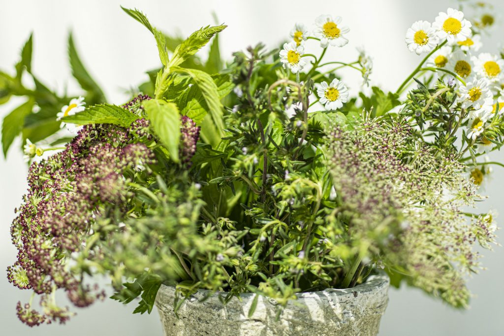 Un bouquet de fleurs et d'herbes