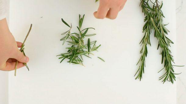 Comment retirer les feuilles de romarin