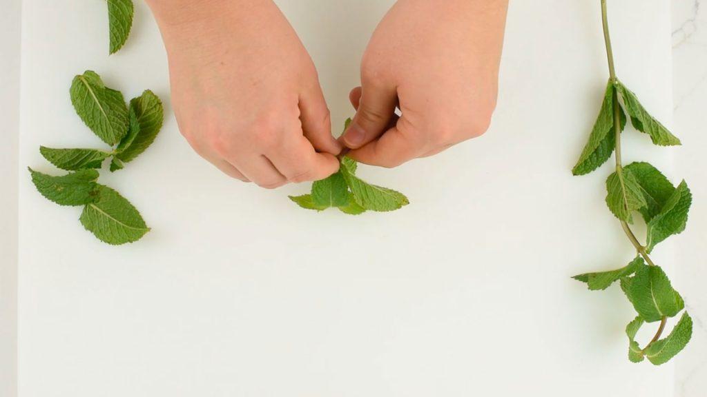 Comment bien retirer les feuilles de menthe