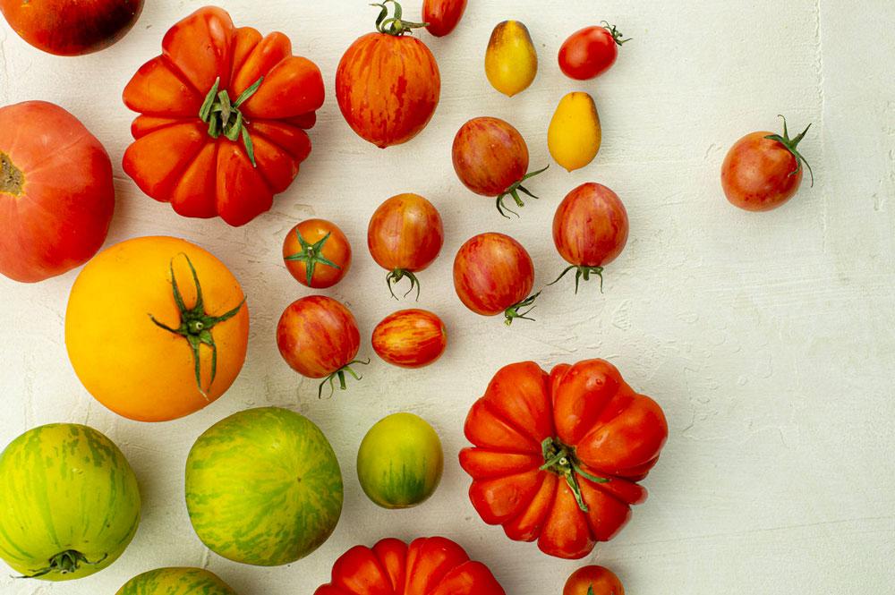 Comment émonder les tomates