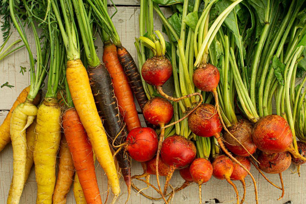 Cuisiner les récoltes