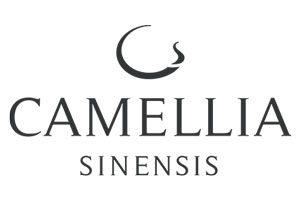 Camelia Sinensis