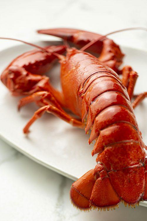 Pâtes au homard, au poivron et à l'agrume