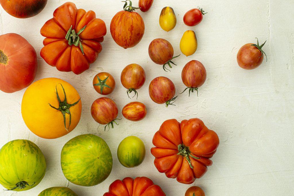 15 000 raisons (ou presque!) d'aimer la tomate