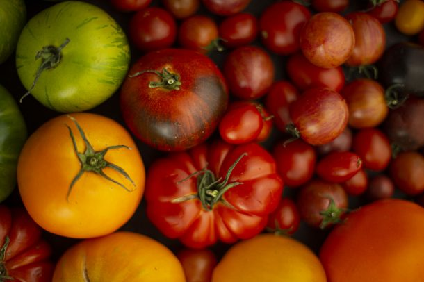 Si on parlait sauce tomate?