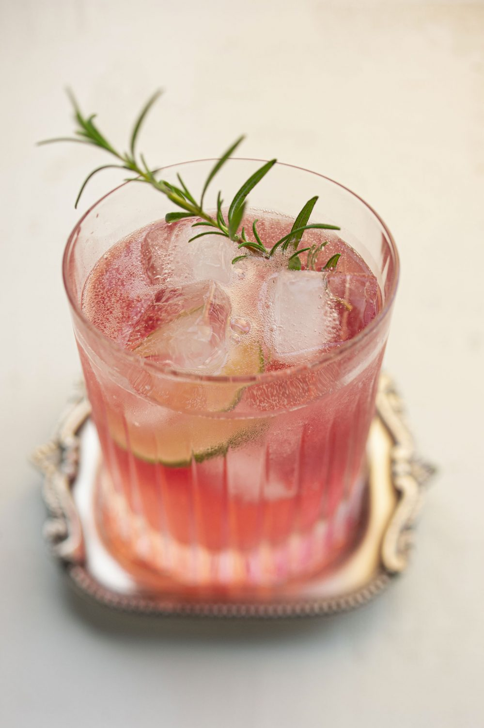 Gin Tonic aux canneberges