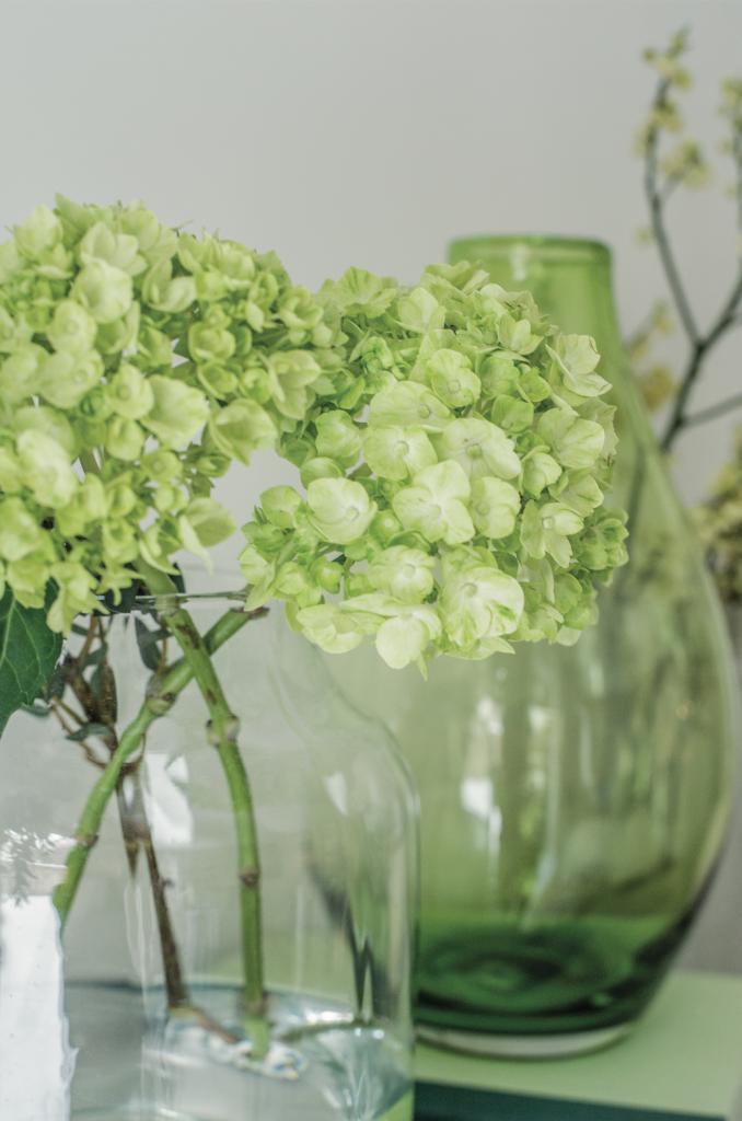 branches-fleurs-422